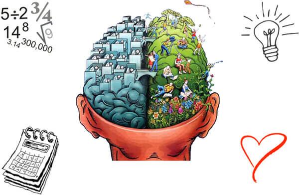 Funzioni della mente