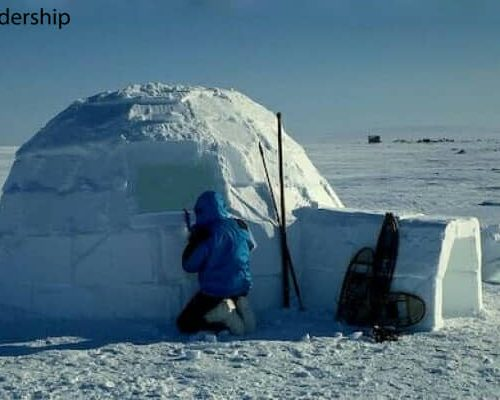 Igloo Building
